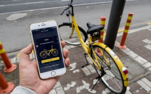 The China Bike Rental Money Cycle