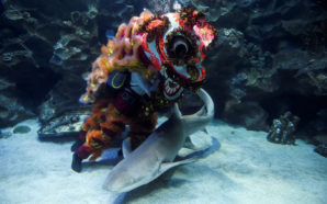 Divers perform underwater lion dance in Malaysia ahead of Chinese…