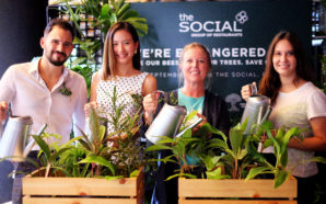 The Social Group Partners With Melissa Tan To Launch 'We're…